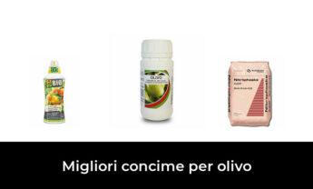 47 Migliori concime per olivo nel 2021 [Secondo 653 Esperti]